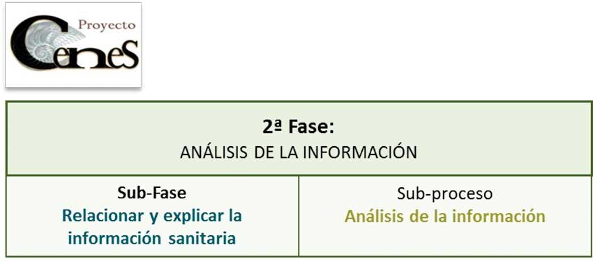 Segunda fase del proceso de valoración enfermera. Análisis de la información