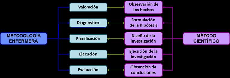 Etapa III. El método científico en el ciclo de calidad de atención a los cuidados
